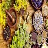 Naturopathy Course
